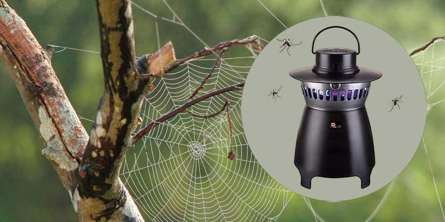 Atrapa mosquitos con tela de araña